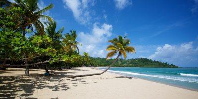 Mozambique Voyages joins Tourvest